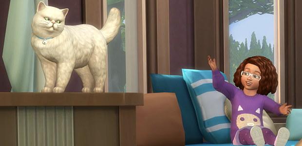21ts4catsdogs2.jpg