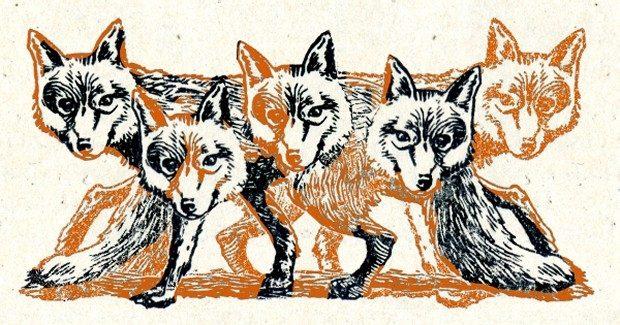 foxertitle2