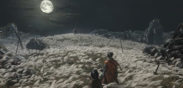 The shinobi with his lord behind him, faces off against the commander on a moonlit field
