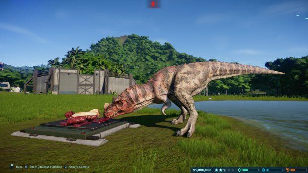Dinosaurs make excellent diving boards.