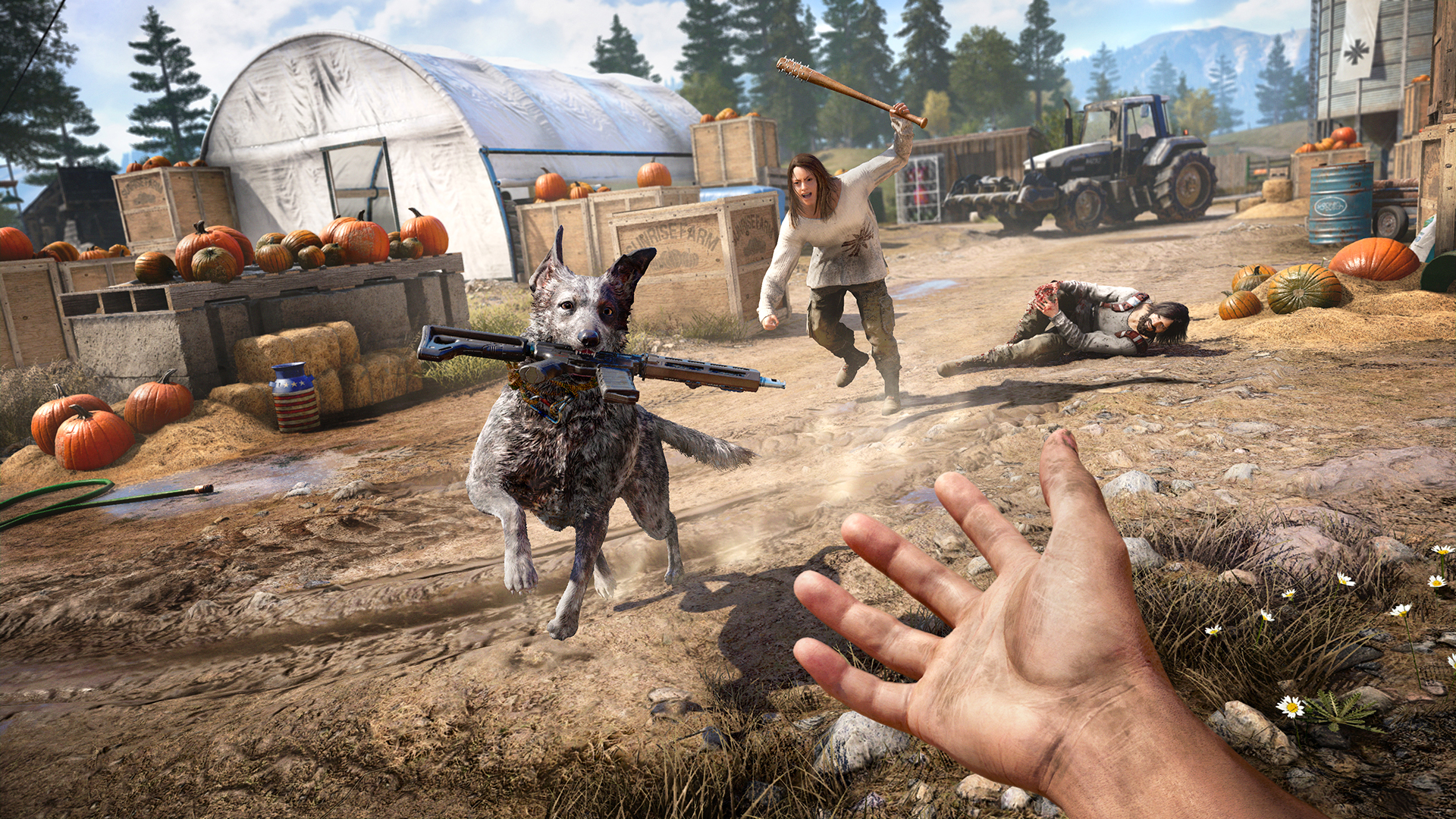 Learn How To BE CONSIDERED A Better Gamer By Applying THESE POINTERS! far-cry-5