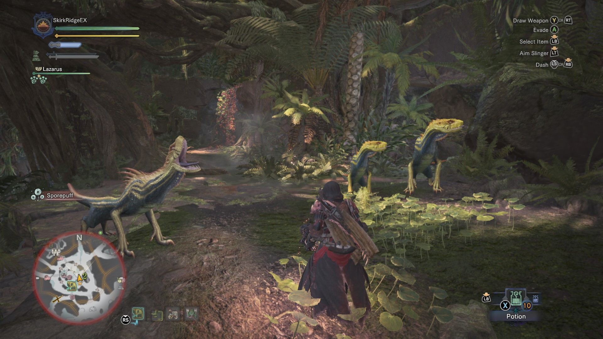 Hunter is bothering and agitating some Jagras.