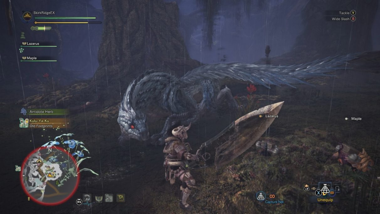 Hunter encounters a Tobi-Kadachi in the dark forest.