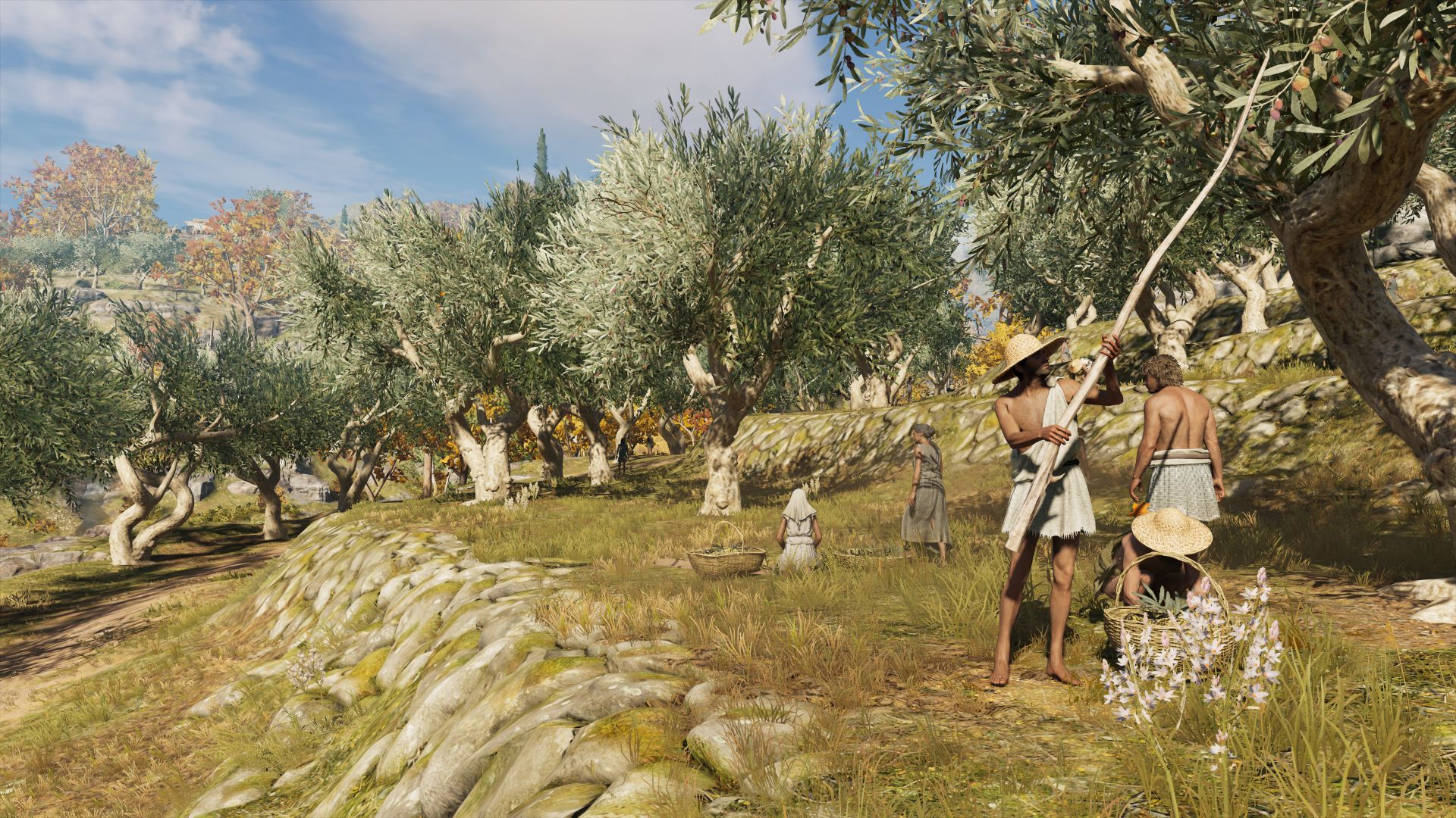NPCs in Assassin's Creed Odyssey are harvesting olives from trees on a sunny hillside