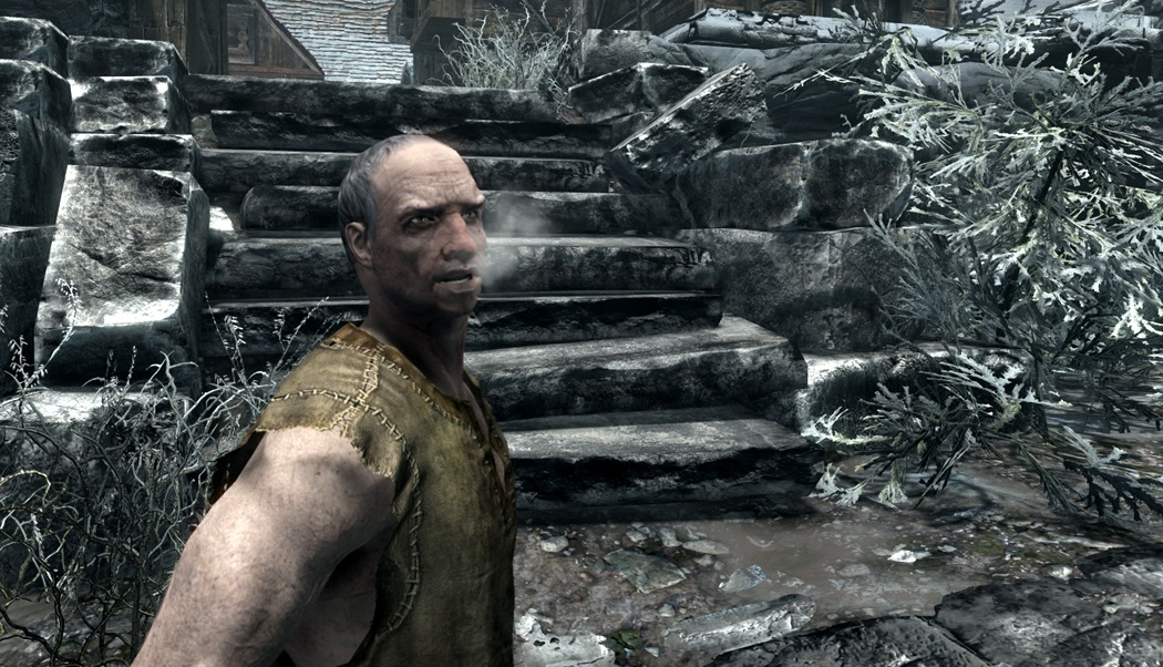 All the best Skyrim mods on PC | Rock Paper Shotgun