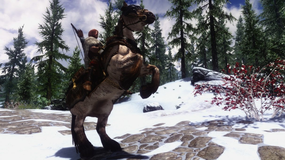 All the best Skyrim mods on PC | Rock Paper Shotgun - Page 11