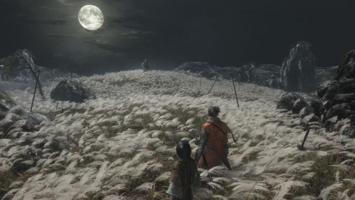 Image result for sekiro photo mode