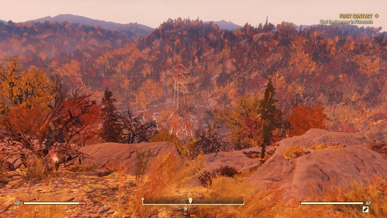 A wonderful view of the wilderness.