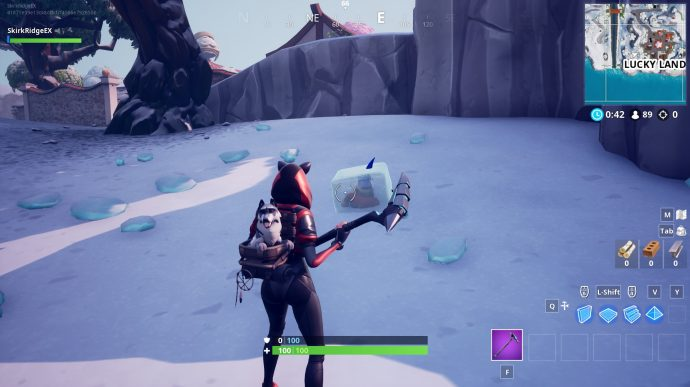 Gnome hidden by Lucky Landing slope.