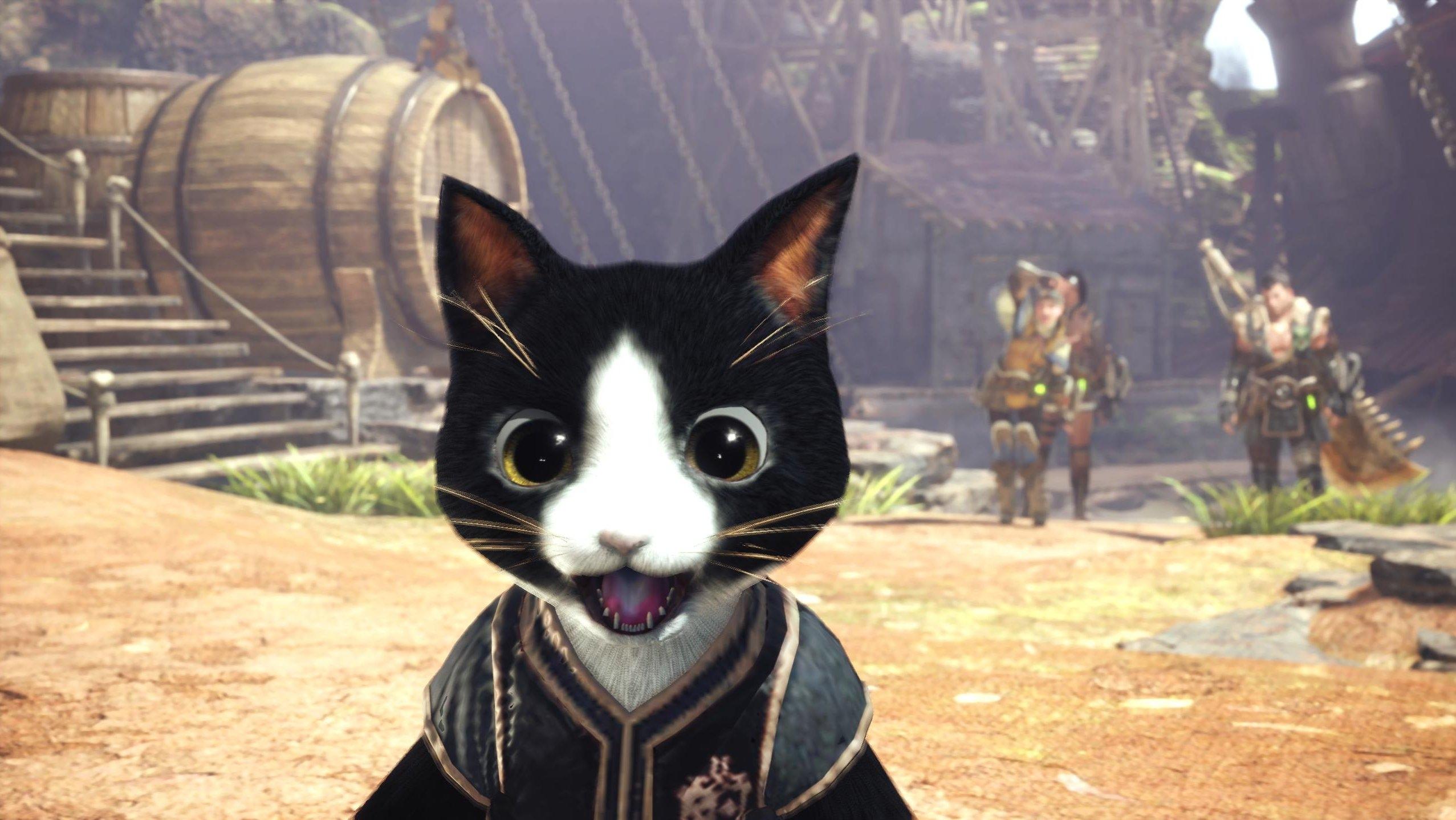 It's a cat. No. NO. It's a cat.