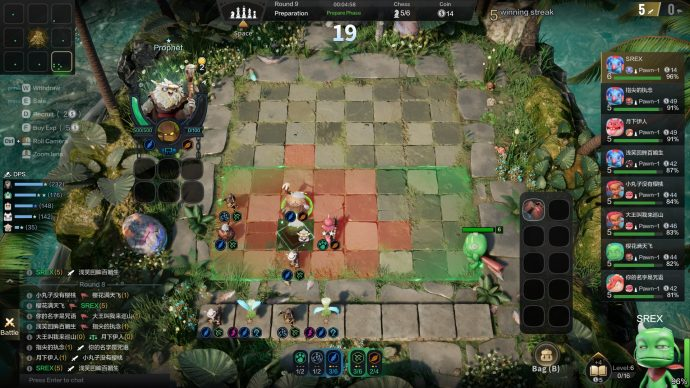 Auto Chess Positioning