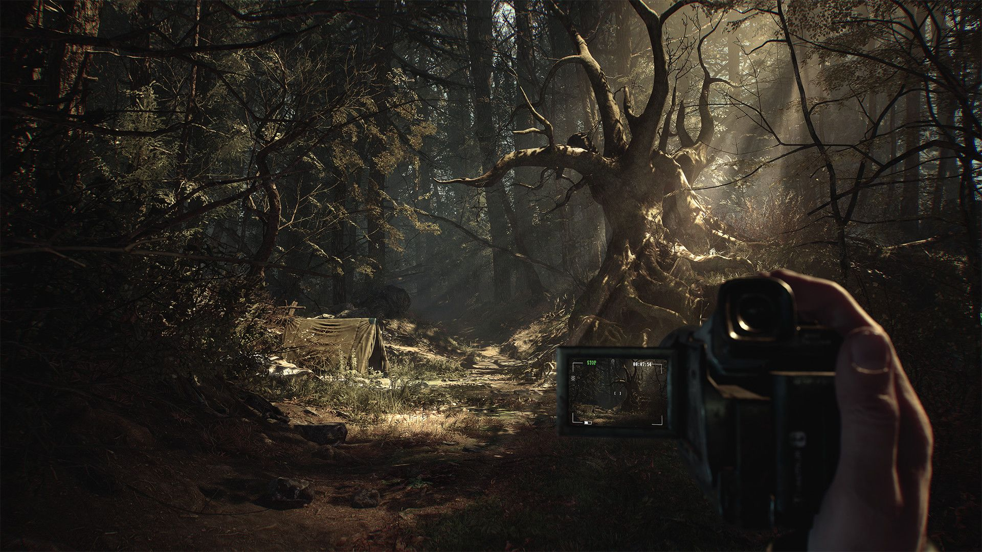 After Blair Witch, what other horror movies are worth turning into games?
