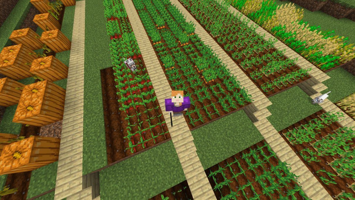 Hounded Out: The adventures of a Minecraft hermit, part three