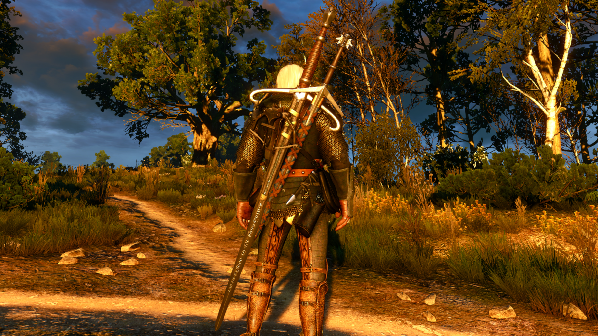 The Witcher 3 best weapons - Silver
