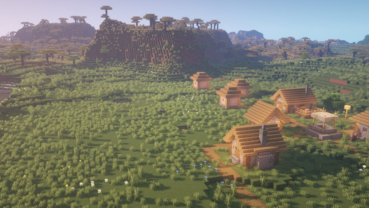Best Minecraft Seeds 1.16.1 - Savanna & Village