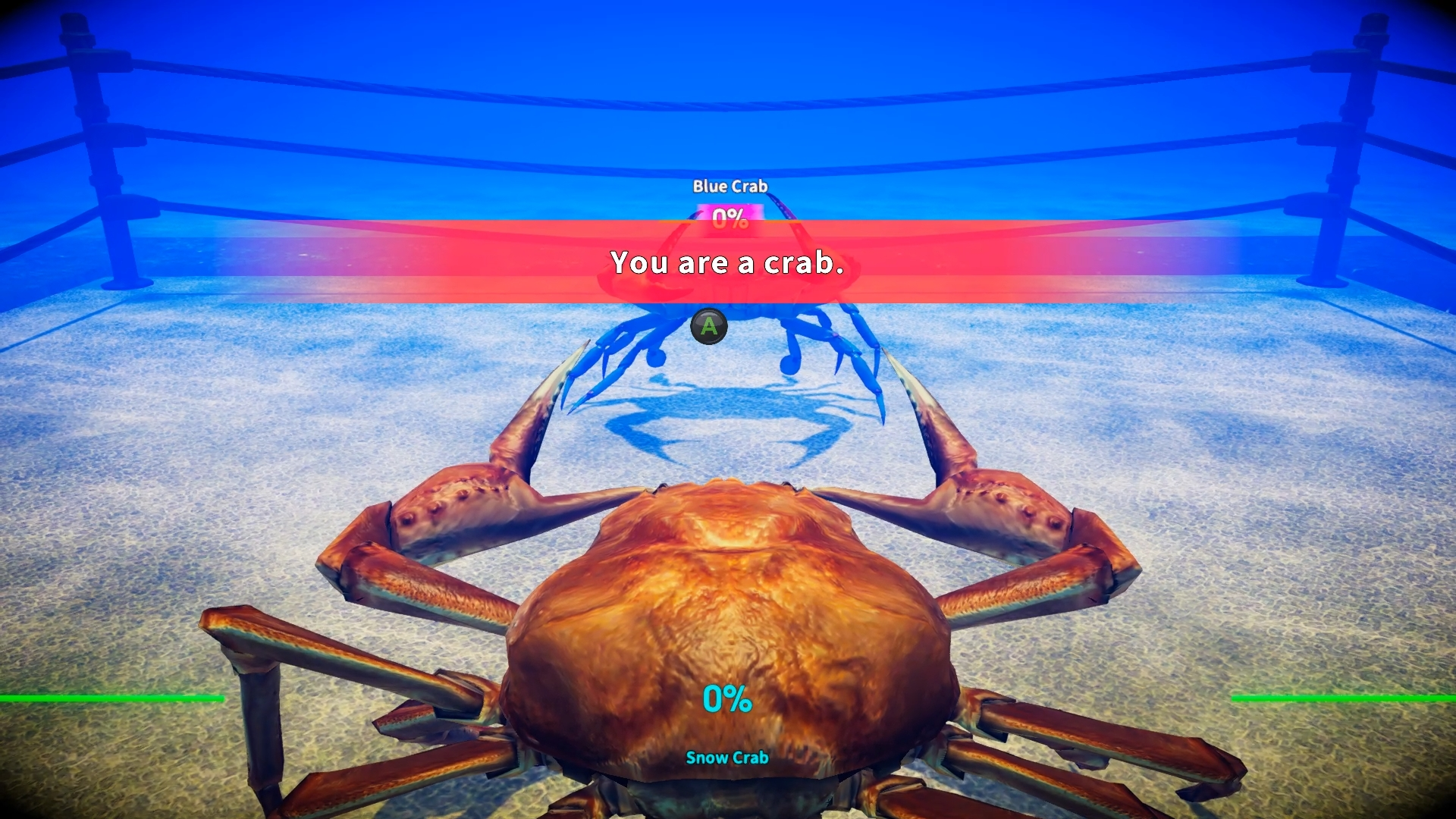 A screenshot from Fight Crab, showing a crab about to do a fight
