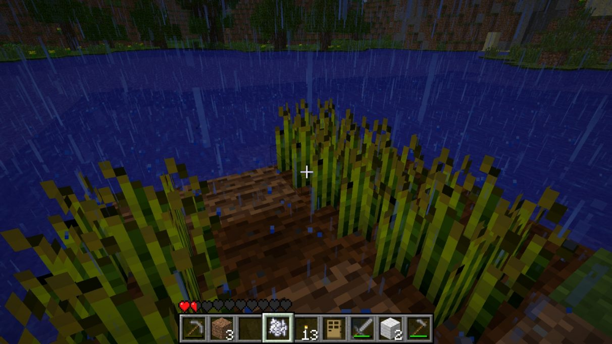 A hastily constructed farm at the side of the lake, made of two short rows of wheat