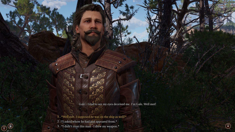 A screenshot of Gale from Baldur's Gate 3.