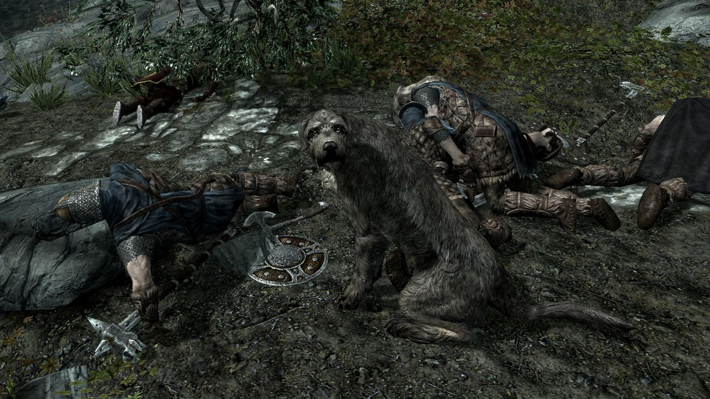 A screenshot of Barbas from Skyrim, a shaggy Irish wolfhound, looking at the camera with sad eyes.