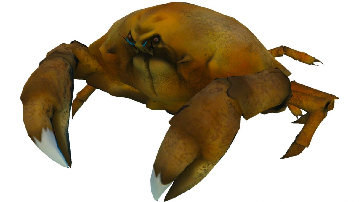 A Calappa crab. It is very round and bulbous, like a cross stone football.