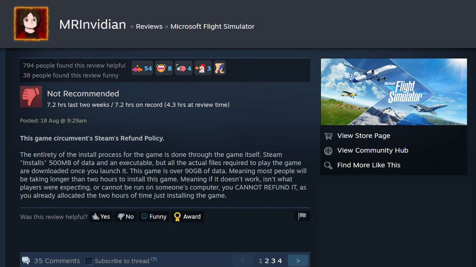 A negative steam user review of Flight Sim