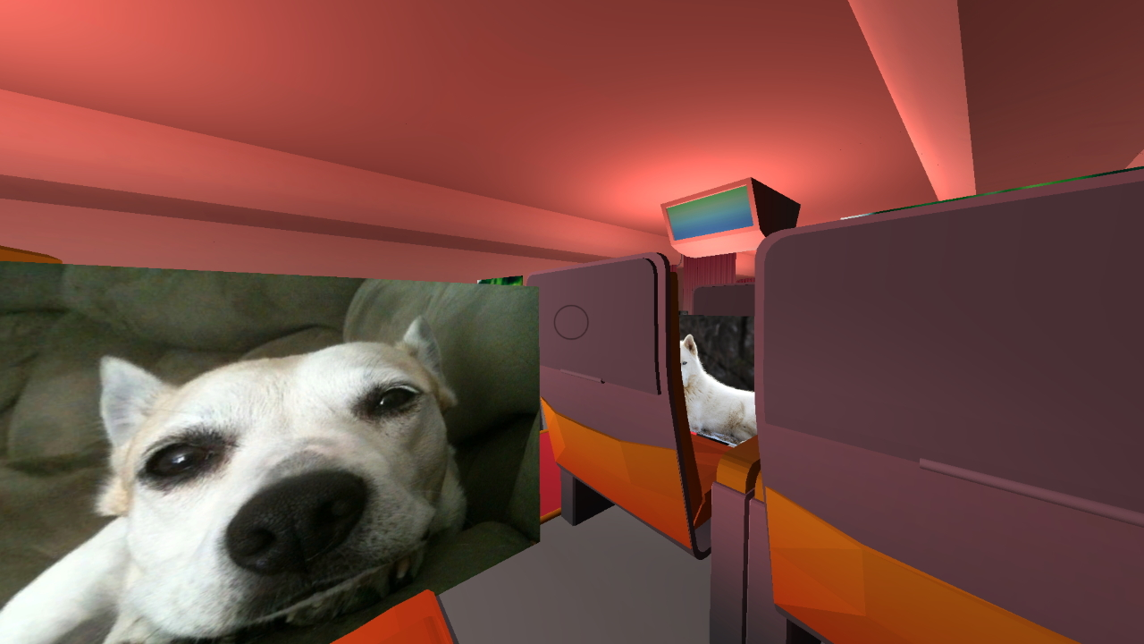 The player sits on a flight while Surgeon Dog stares at us...