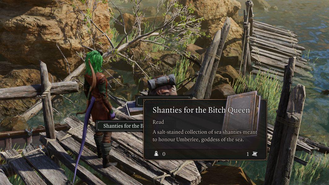 A screenshot from Baldur's Gate 3 showing Tav Wonderwall, protagonist extraordinaire, having found a book called Shanties For The Bitch Queen
