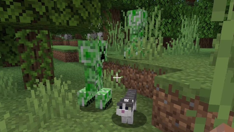 A cat and two creepers live in bugged harmony.