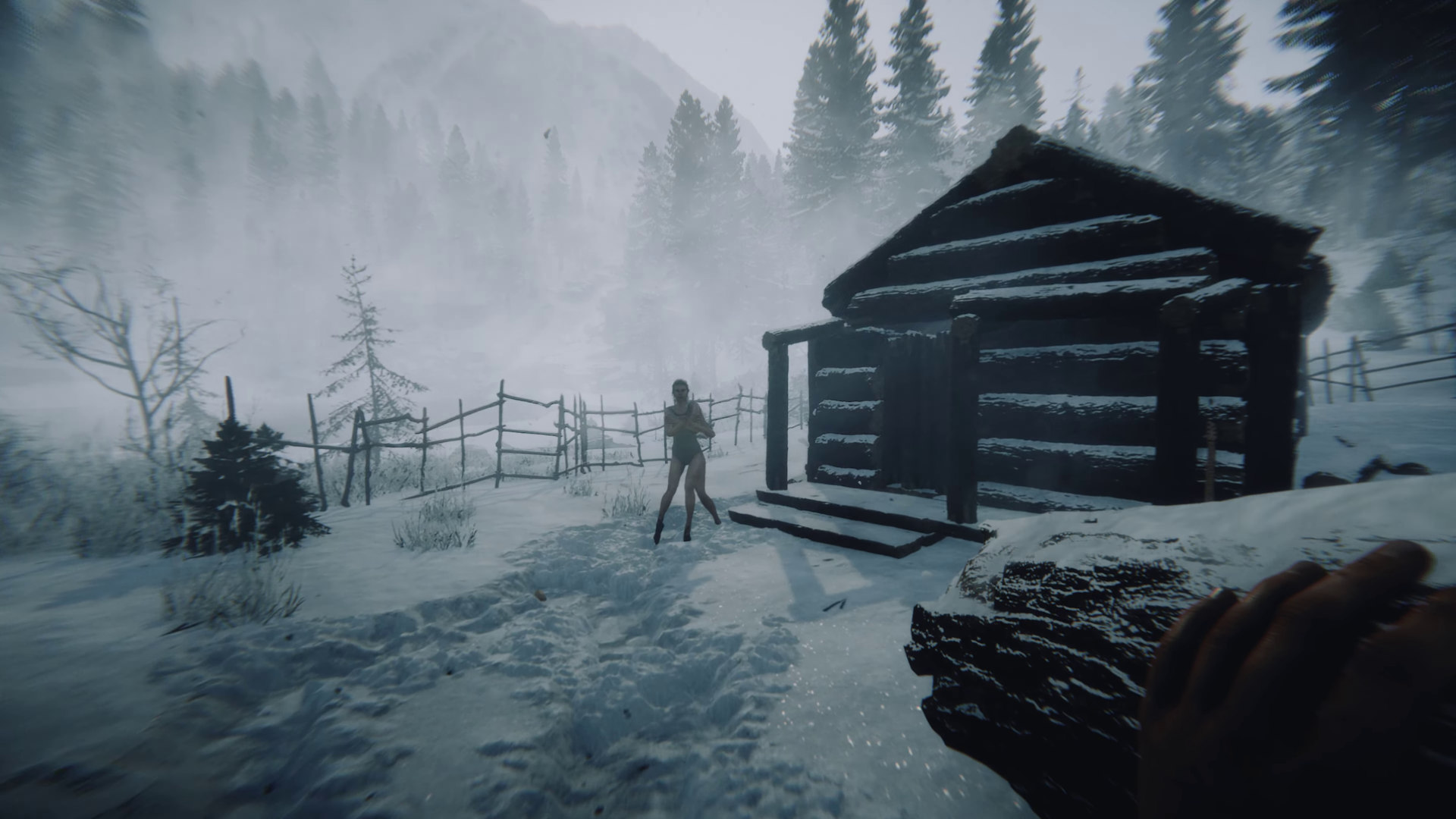 A snowy frame from the Sons Of The Forest trailer.