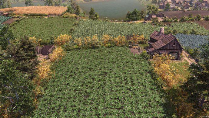 Sebuah ladang tanaman, subur dan hijau. Nyam.