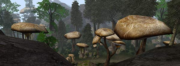 these mushrooms might look even more impressive, although probably more cartoony as well