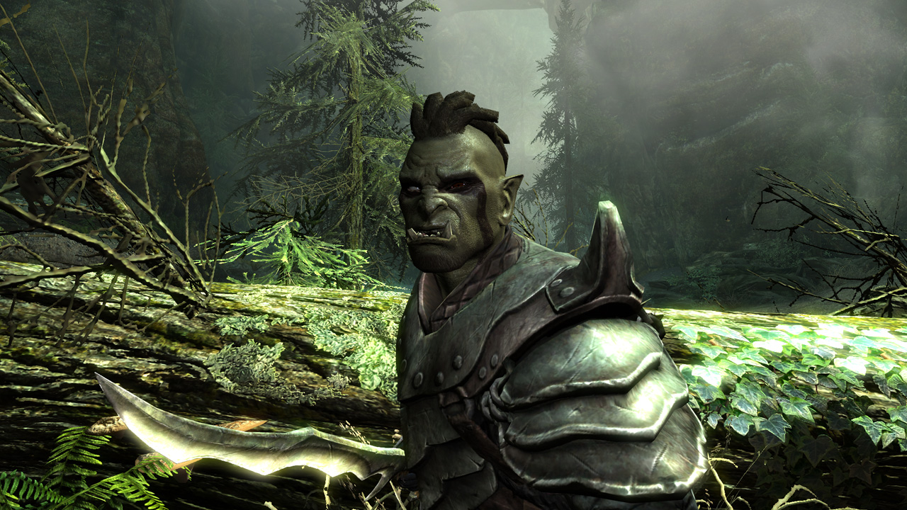 20 reasons to be excited about skyrim rock paper shotgun