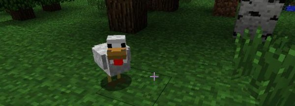If you haven't played Minecraft you won't realise how important small birds are to the plot.