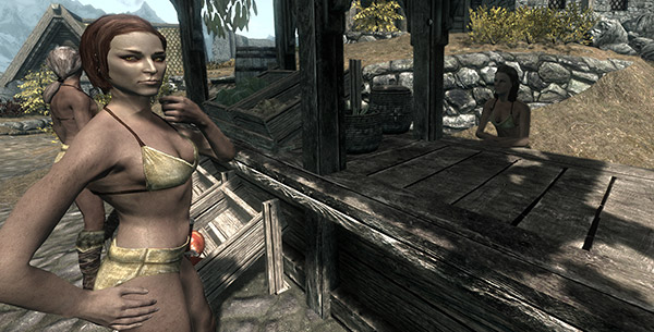 Dec 9, 2011 From Skyrim Meme to Lady's Flesh The Elder Scrolls V