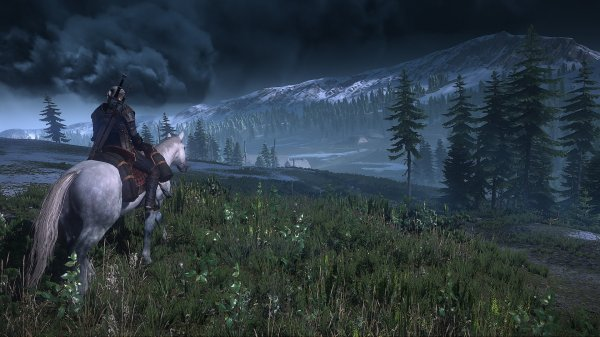 Player one: Geralt, player two: his horse. Greatest co-op mode of all time.