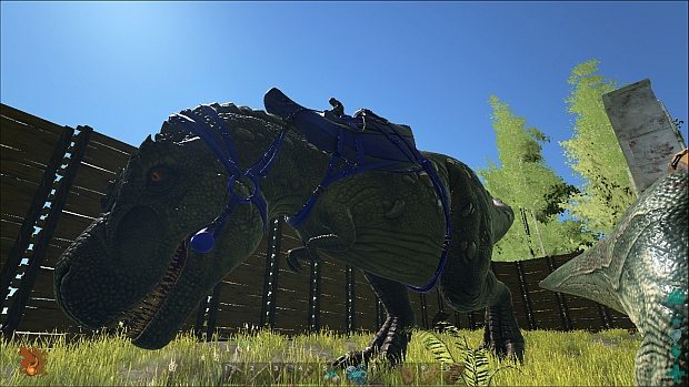 An anthropological jaunt through ark survival evolved rock instead he hopped onto the back of a tyrannosaurus rex and stomped around inside the compound it is possible this was a show of strength malvernweather Choice Image