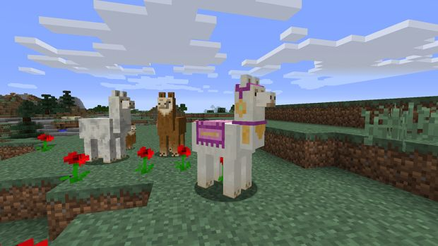 the llamas live in mountain regions and can be equipped with your items and a piece of carpet to look snazzy not only will they follow you on their travels