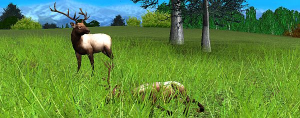From Hunting Unlimited 2008, now available on Steam. If you like shooting badly-rendered deer in the lungs, you'll love Hunting Unlimted 2008.