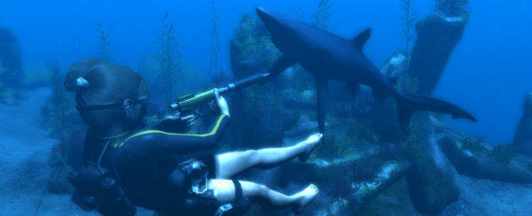 LARA VS SHARK ULTIMATE CAGEFIGHT