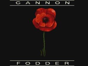 Cannon Fodder.